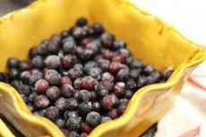 Blueberry-Pickin'-July-2013-031